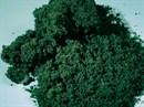 76982 Флок темно-зеленый мелкий 1000 мл